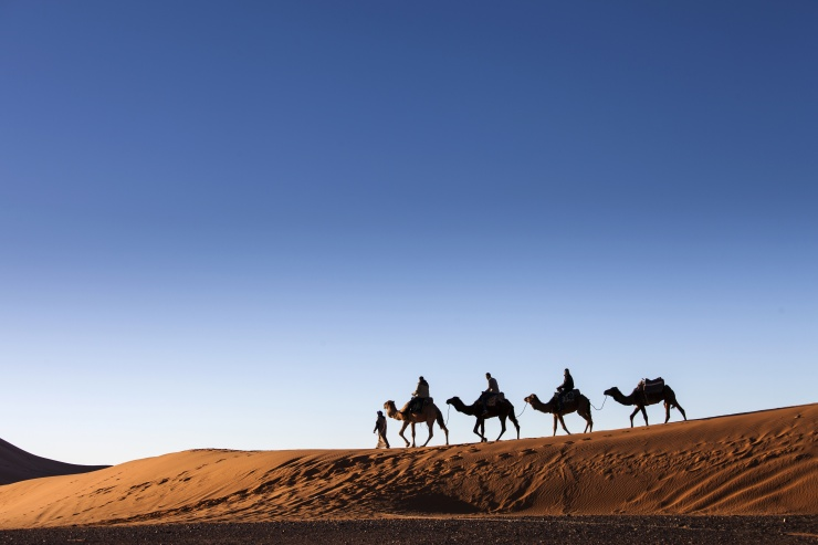 Desert, Camel Ride, Enjoying and Happy People